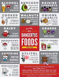 Foods Dogs Should Not Eat Chart Top Ten Foods To Not Give Your Pet Olsen Veterinary Clinic