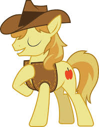 Image result for braeburn pony