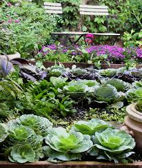 Ornamental Kitchen Garden April Is National Garden Month