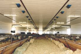 interior of the new barn note air intakes on ceiling