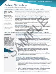 sample hr director resumes executive resume sample global human resources executive