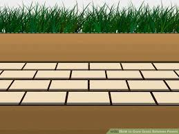patio pavers with grass in between. Image Titled Grow Grass Between Pavers Step 3 Patio With In