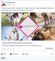 dog walking advertising the professional dog walkers guide to facebook advertising