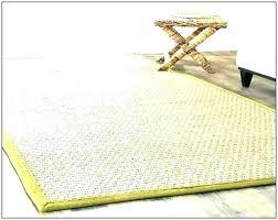 ing cleaning sisal rugs rug dog vomit