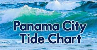 Sw Georgia Tide Chart Archives Coastal Angler The