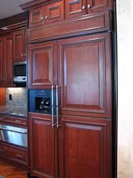 I love the hidden cabinet fridges!