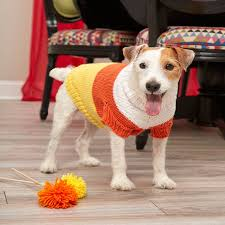 Free Knitted Dog Sweater Patterns New Candy Corn Dog Sweater Red Heart