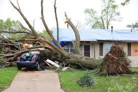 Can I get an auto insurance coverage for a Falling tree branch?