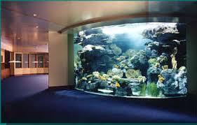 office aquariums. Perfect Aquariums Private Office Aquarium In Aquariums