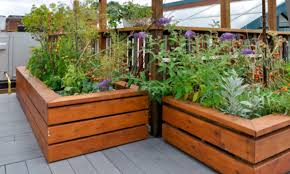 diy elevated garden beds you can build