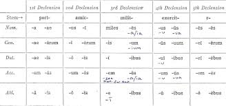 Declension Review Latin For Rabbits