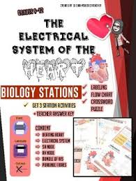 Heart Chart Crossword Electrical System Of The Heart High School Biology Stations