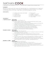 Examples Of A Basic Resume Fascinating Resume Format For Team Leader Sample Examples Templates Operations