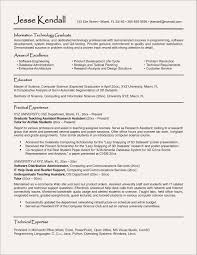 Information Technology Resume Template Curriculum Vitae Specialist