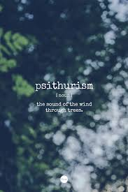 Word Of Nature Word Of The Day Psithurism The Sound Of The Wind Through Trees