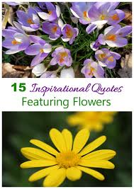 Flower Quotes Unique Inspirational Flower Quotes To Motivate The Gardening Cook