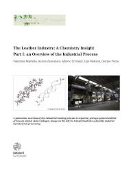 pdf the leather industry a chemistry insight part i an overview of the industrial process