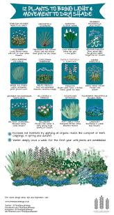 Small Picture Best 20 Shade grass ideas on Pinterest Shade plants Shade