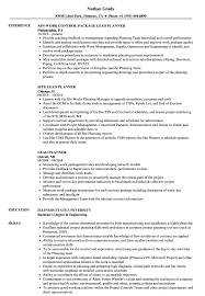 Download Lead Planner Resume Sample as Image file