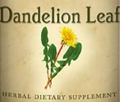 uses for dandelion leaf tincture