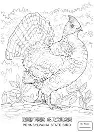 gilboardss.com   free coloring pages for kids