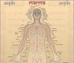 Marma Chart Marma Chart Ayurvedic Therapy Acupuncture Benefits Ayurveda
