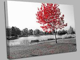 white canvas wall art picture print