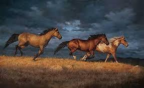 thunder ridge horses canvas art prints on wild horses wall art with thunder ridge horses canvas by chris cummings wild wings