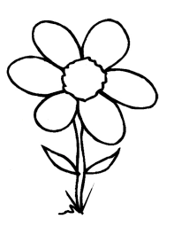 coloring book flowers spring flowers coloring book coloring spring flowers my name coloring pages