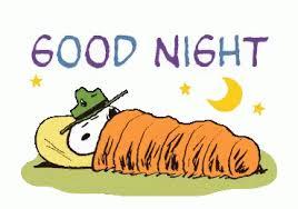 """Résultat de recherche d'images pour """"good night gif"""""""