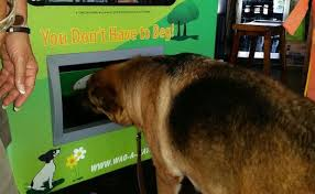 Dog Treat Vending Machine Best Doggy Vending Machines Are Now A Thing And We Love It BarkPost