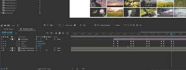 Multiple ways to create a shape layer in after effects? A Guide To Basic Keyframing In Adobe After Effects Pond5