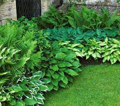 preplanned gardens plant collections