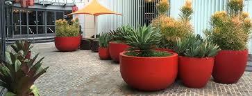outdoor ceramic plant pots pots and planters large outdoor plant pots nz