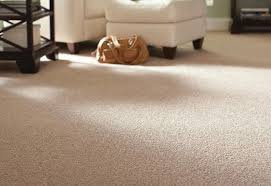 Small Picture How To Choose Carpeting at The Home Depot