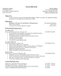 Objective For Resume A Good Objective For A Job Resume En Sample Objective For Resume 82