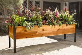 raised cedar planter box. At 29 On Raised Cedar Planter Box