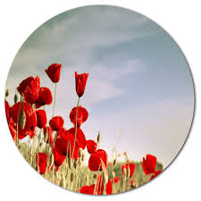 flourishing red poppies flower large disc metal wall art 11  on red poppy metal wall art with flourishing red poppies flower large disc metal wall art