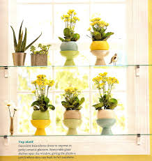 Kitchen Window Shelf Glassshelvesjpg