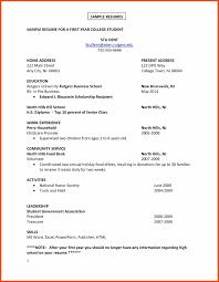 First Job Resume Program Format