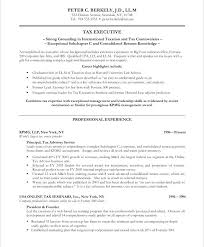 Executive Resume Writer Old Version Service Nyc