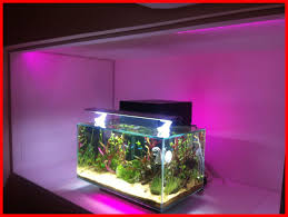 fish tank lighting ideas. Amazing Ikea Dioder Led Lighting A Fluval Edge Tropical Fish Tank Picture Of Aquarium Lights Popular Ideas T
