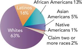 a pie chart shows race ethnicity of the u s potion