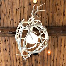 egg antler globe light in home view contemporary modern rustic from the peak antler co