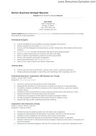 Sample Resume For Business Analyst Adorable Objective For Business Analyst Resume Resumes It Best Of An