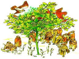 Resultado de imagen para Con un grano de mostaza: al sembrarlo en la tierra es la semilla más pequeña