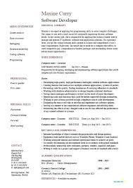 Software Engineer Resume Examples Amazing Resume Software Engineer Datainfo
