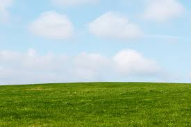 green grass blue sky. Simple Green Green Grass Blue Sky Inside O