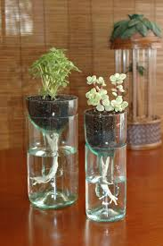 Self Watering Planter Made From Recycled Wine Bottle by JNeatherlin  #Planter #Upcycle #Wine_Bottle