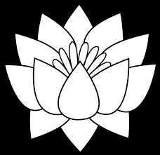 pin drawn line art flower 5 flower black and white png